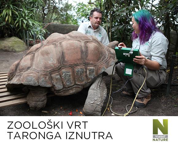 Zoološki vrt Taronga