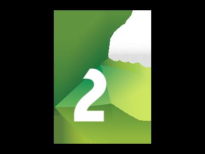 RTV 2